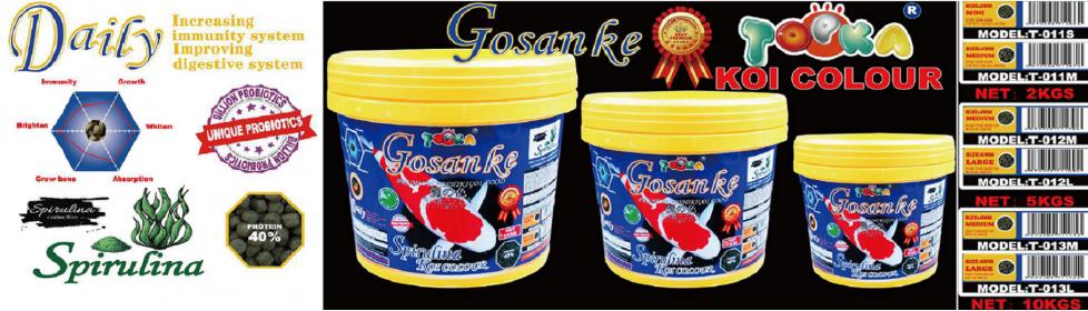 Gosanke Spirulina Koi Colour